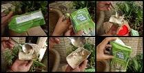 nestle milk pack