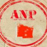 ANP-flag